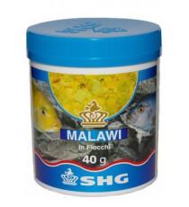 SHG Malawi in fiocchi 75g