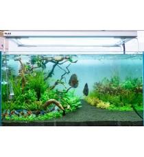 Blau aquaristic acquario gran cubic 230 solo vasca