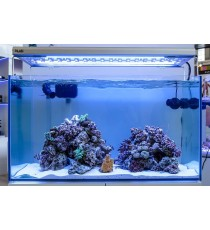 Blau aquaristic acquario gran cubic marine 230 solo vasca