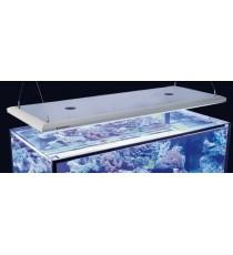 Giesemann Aquaristic Futura