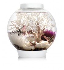 Oase biorb classic 15 LED TROPICAL