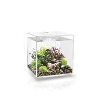 Oase biorb Cube 30 MCR Led multicolore